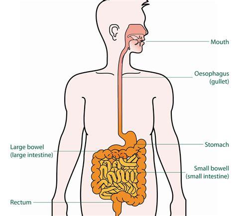 gamot sa gastric acid picture 6
