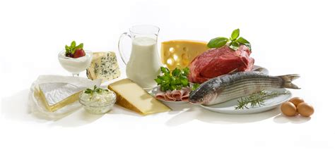 best diet for proteinuria picture 2
