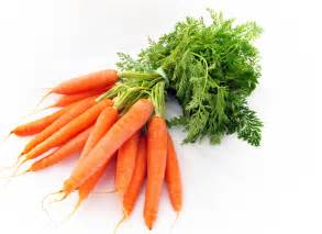 food that helps blood flow to the genitals picture 5