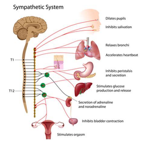 flu symptoms with gastrointestinal symptoms picture 15