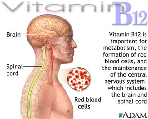 vitamin b-12 shots for weight loss picture 5