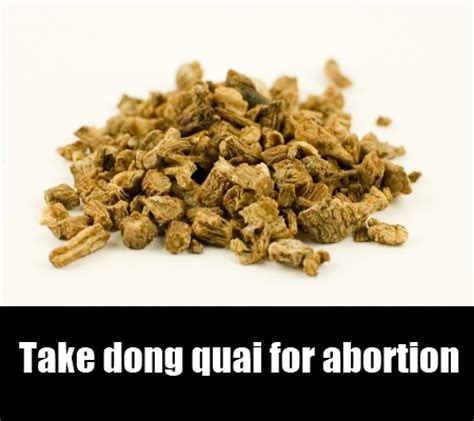 what herbs and roots terminate pregnancies in nigeria? picture 1