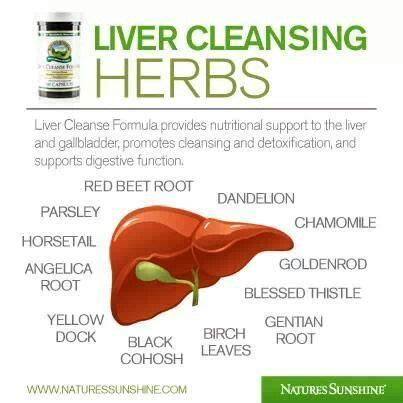 herb gallbladder cleanse picture 1