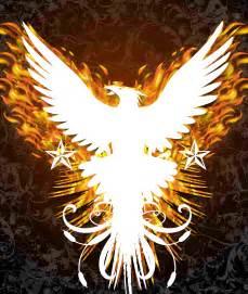 how can individuals buy phoenix lipovicine picture 4