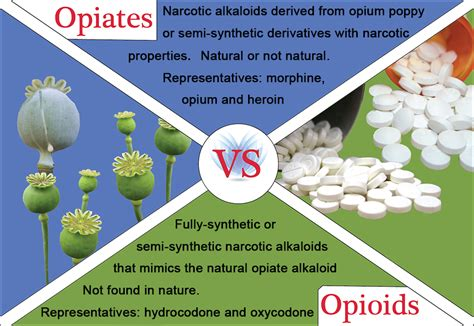 herbal drugs that produce opiate effects picture 5