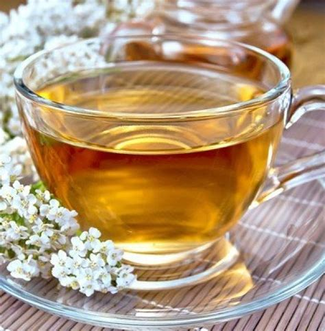 yarrow tea picture 6