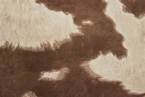 cow skin picture 18