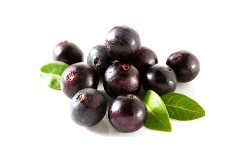 acai berry hair growth picture 1