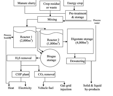 diagrams showing the digestion process picture 7