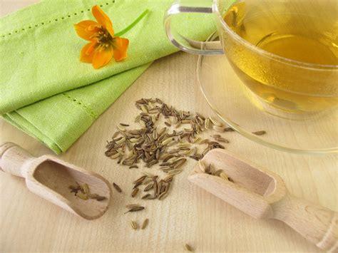 fennel tea benefits picture 18