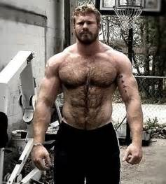 muscle bear hair picture 9