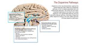 dopamine drugs for men picture 5
