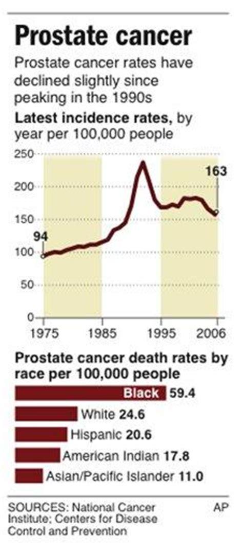 prostate 2006 picture 11