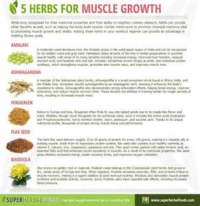 natural remedy for healthy muscle tissue function picture 5