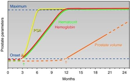 testosterone treatment length picture 2