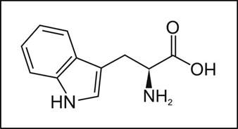 amino acids for pain and sleep picture 2