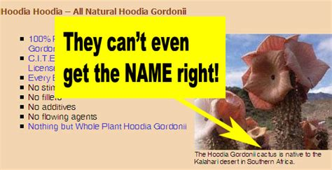 fraudulent hoodia picture 7