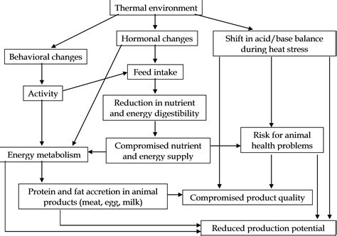factors affecting show pigs skin picture 3