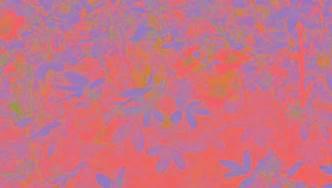 bright h picture 11