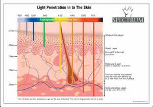 pulsed light therapy and skin picture 7