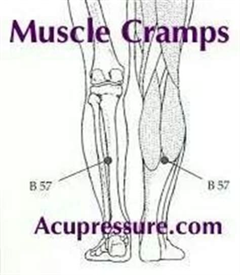 acupressure points for pelvic muscle spasms picture 2