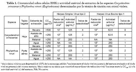 euphorbia n herpes picture 6