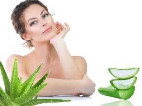 aloe vera hair care in urdu picture 6