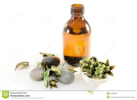 california herbal health spas picture 13