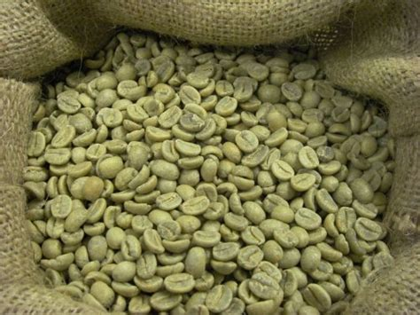 enlargement with green coffee beans picture 9