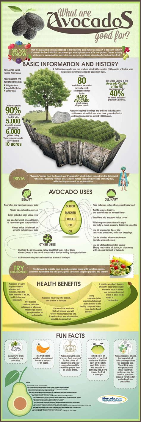 Cholesterol and avacado picture 5