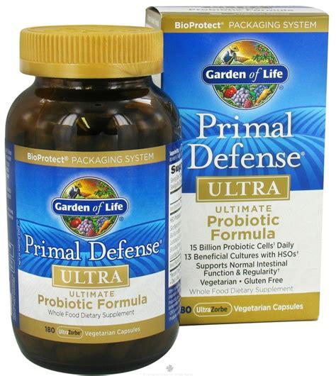 probiotic bacteria picture 3