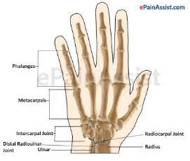 home remidies for wrist joint problem picture 3