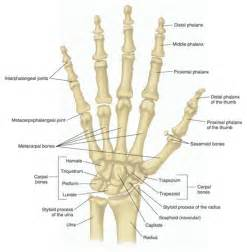 finger joint pain picture 3