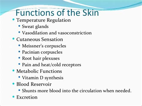 functions of the skin picture 10