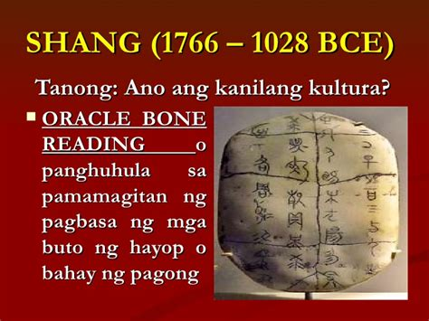 ano ang bone marrow picture 1