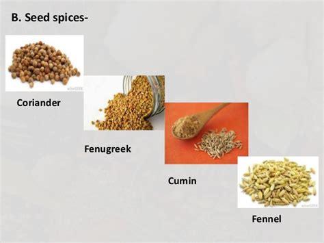 bulk fenugreek seed picture 10