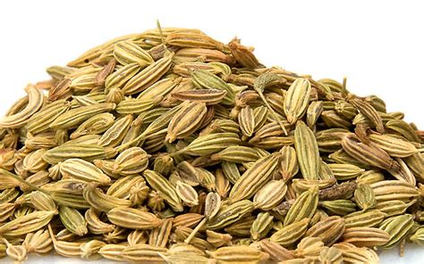 fenugreek and thyme picture 3
