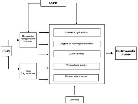 copd and sleep apnea picture 2