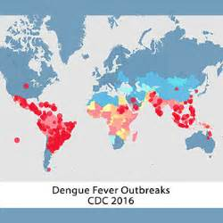 dengue fever caribbean outbreaks picture 1