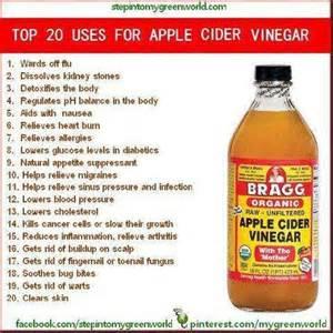 apple cider vinegar and honey diet picture 3