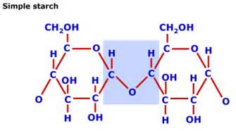 chemical structure of starch picture 1