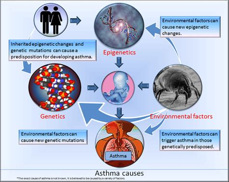 diet and asthma picture 1