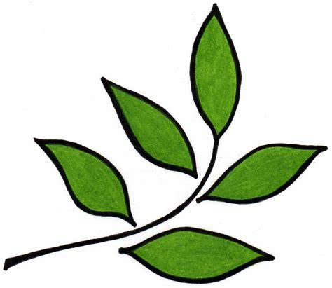 rhino herbal tea testimonials picture 2