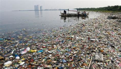 marine trash & debris guidelines picture 11