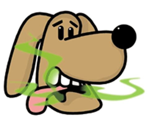 canine indigestion bad breath picture 10