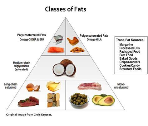 Cholesterol fat picture 1