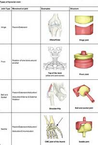 types of joints picture 1
