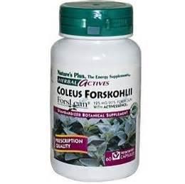 coleus forskohlii thyroid picture 15