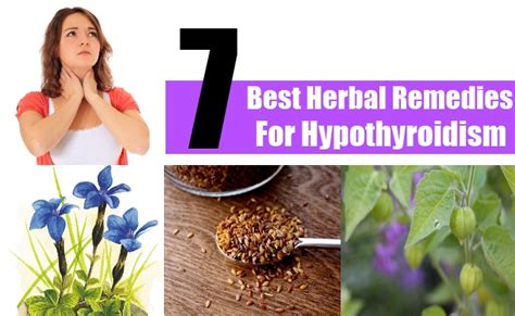 hypothyroidism and herbal supplements picture 5