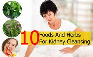 herbal remedies kidney stones picture 7